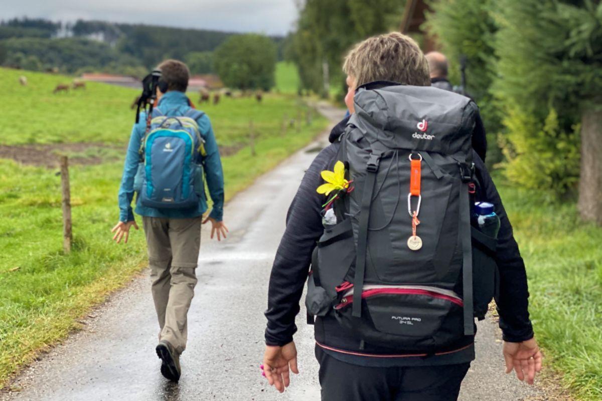 Impulswandern in der Natur