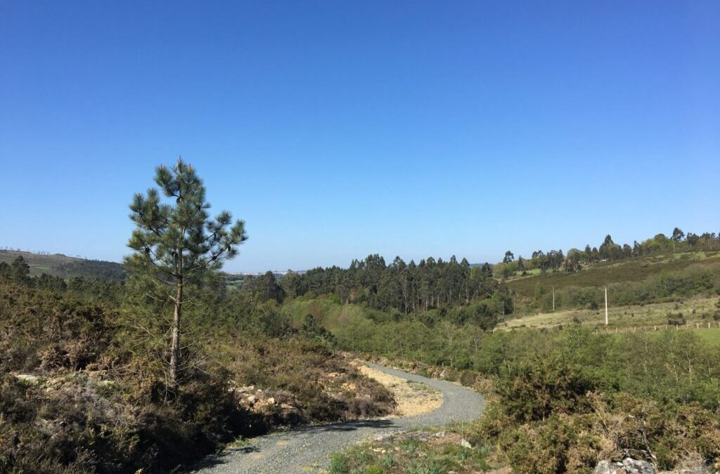 05.05.2018 – Camino Primitivo 9. Tag