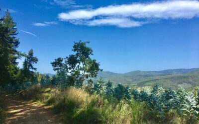 20.09.2019 – Camino del norte 4. Tag