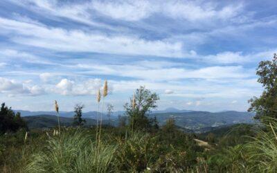 21.09.2019 – Camino del norte 5. Tag